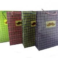 Пакет подар PVC 22*28см КЛЕТКА(1/12/960)4диз