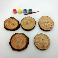 Набор д/творчества краски+5деревян спилов TYGYP-19(240) d8см